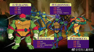 Rise of TMNT Ages