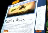 TMNT12 Parasitica description 1