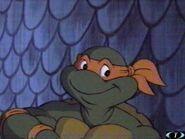2500769-turtle517
