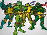 03 Turtles Group