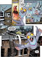 Pigeon coop 3