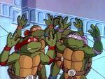 Turtles royal captured