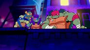 The Turtles 20