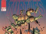 Teenage Mutant Ninja Turtles issue 19 (Image)
