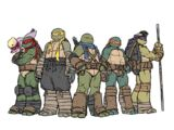 Ninja Turtles (IDW)