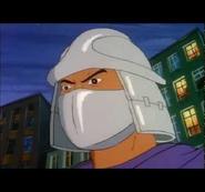 Shred11