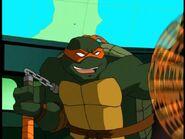2500763-turtle304
