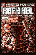 Idw - raphael variant cover 3