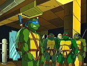 Leo,Raph,Don and Mikey 3
