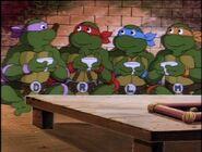 2272442-turtles1