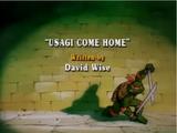 Usagi Come Home