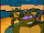 2500573-turtle265