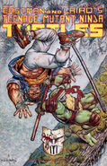 49cover