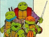 Future-Turtles