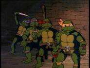 2198651-turtles127