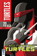 Idw - TMNT72 cvrSUB variant cover