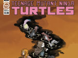 Teenage Mutant Ninja Turtles issue 108 (IDW)
