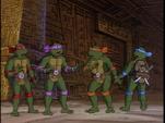 Bye bye fly 42 - turtles