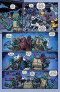 Teenage Mutant Ninja Turtles 048-021