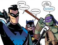 Nightwing batgirl donatello