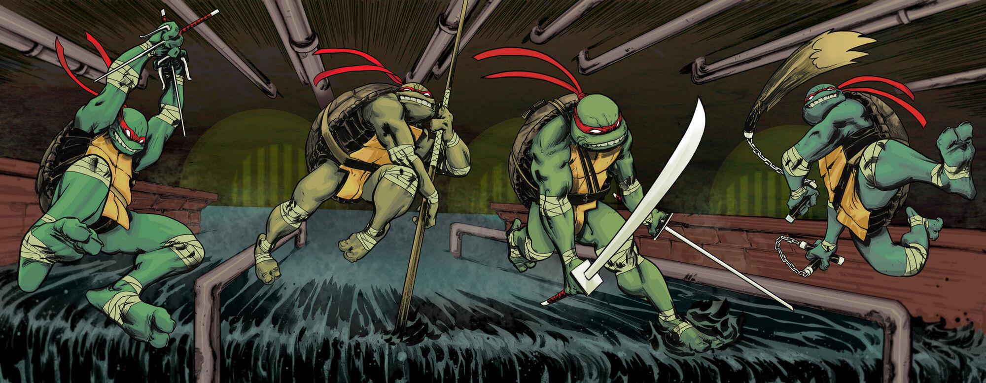 Teenage Mutant Ninja Turtles Idw Tmntpedia Fandom Powered By Wikia