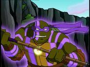2500600-turtle714
