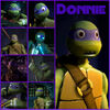 Tmnt donnie collage 2 by culinary alchemist-d62mqfj
