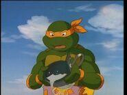Turtleface7
