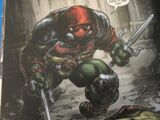 Raphael (Crisis in a Half Shell)