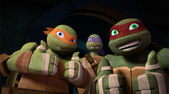Mikey-and-Raph-TMNT-121