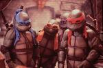 4034616-turtle2115