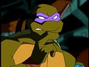 2500572-turtle256