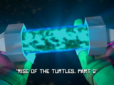 Rise of the Turtles, Part 2