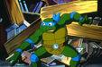 Turtles leonardo