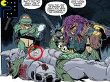 Teenage Mutant Ninja Turtles (IDW)/Easter eggs