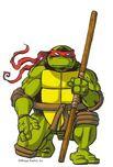 2521014-turtle1384