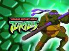 Donatello TMNT bumper