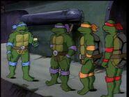 2272449-turtles117