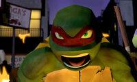 Turtle-Temper