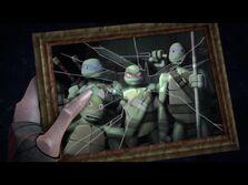Turtle pic