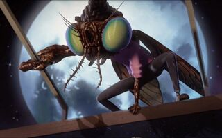 Image baxter fly