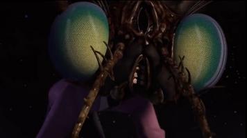 Fly grrr
