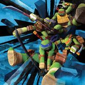 Four-turtles-image-03 12-2