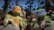 The turtles eavesdropping