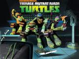 Teenage Mutant Ninja Turtles (TV series)