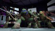 Turtles, attack!