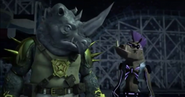 Bebop and rocksteady looking at eachother
