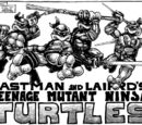Tmnt fiction Wiki