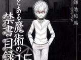 Toaru Majutsu no Index Light Novel Volume 15