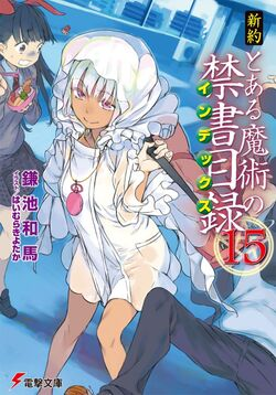 Shinyaku Toaru Majutsu no Index Light Novel v15 cover